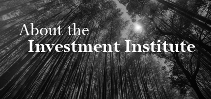 About the Investment Institute